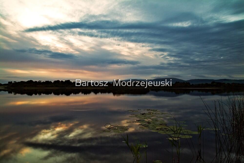 The lake by Bartosz  Modrzejewski