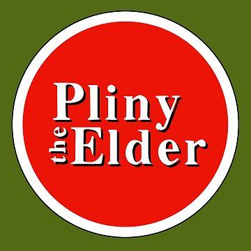 Pliny Elder by kcgfx