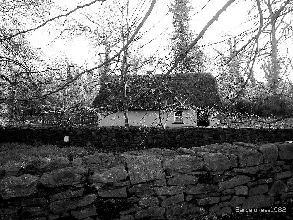 Irish cottage by Barcelonesa1982