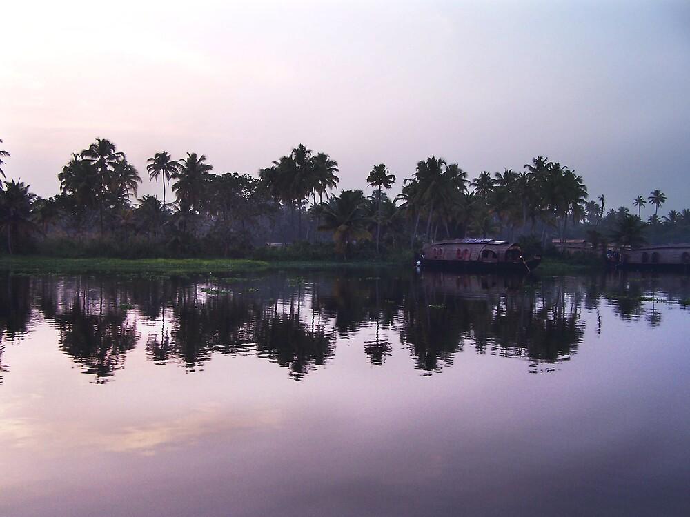 Kerala backwater by Denky
