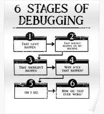 Póster 6 etapas de depuración