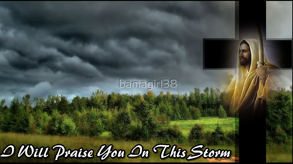 I Will Praise You In This Storm  by bamagirl38