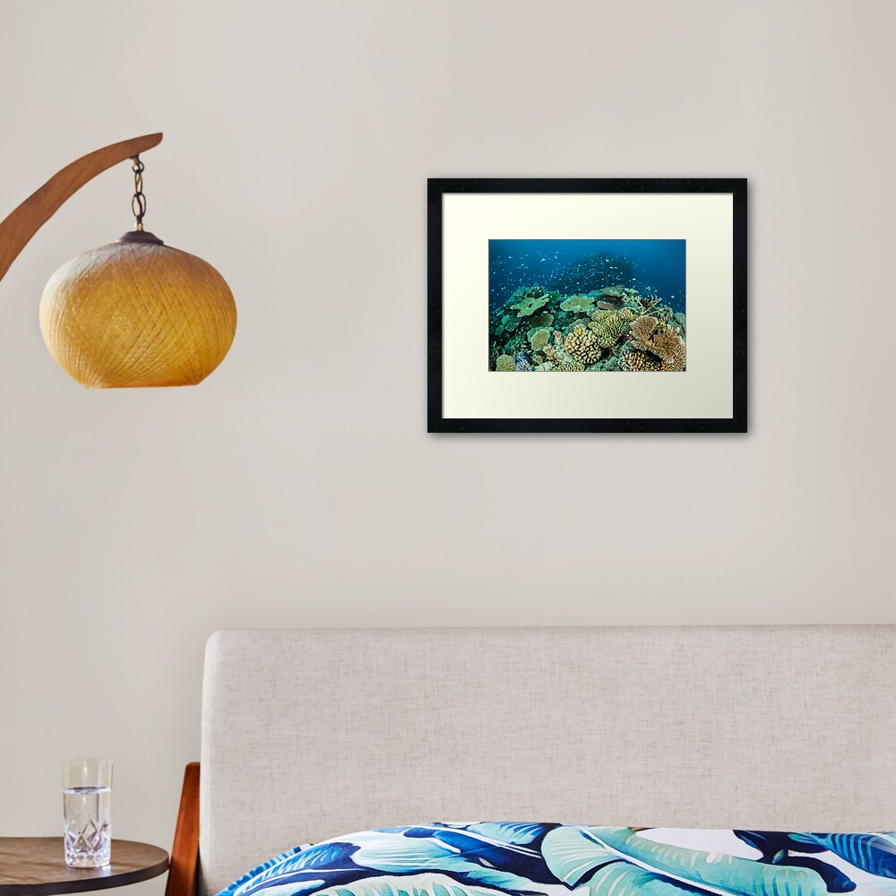 Coral reef- cradle of life Framed Art Print