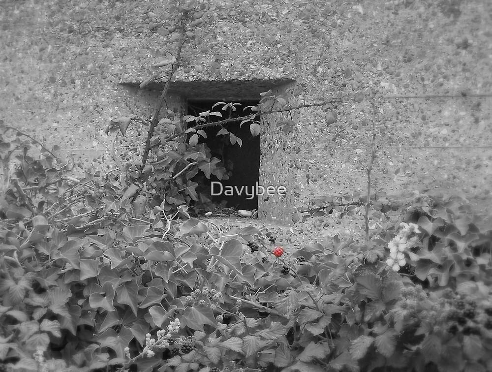 WW2 Pill Box by Davybee