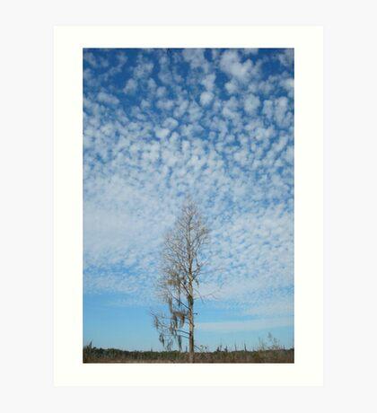 Cypress Under a Popcorn Sky Art Print