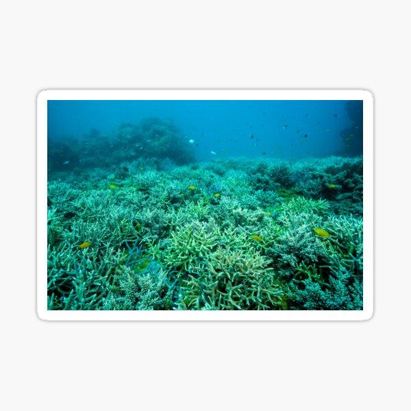 Coral gardens Sticker