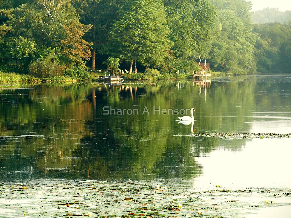 SWAN ON WEST LAKE by Sharon A. Henson