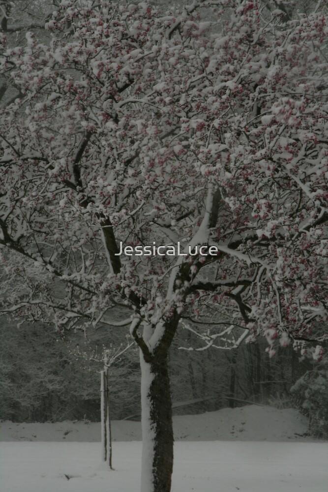 The Blossom Tree by JessicaLuce