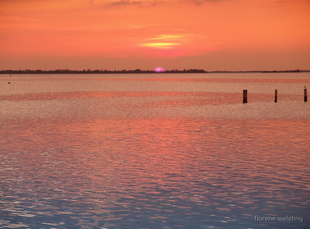 Florida Sunset by florene welebny