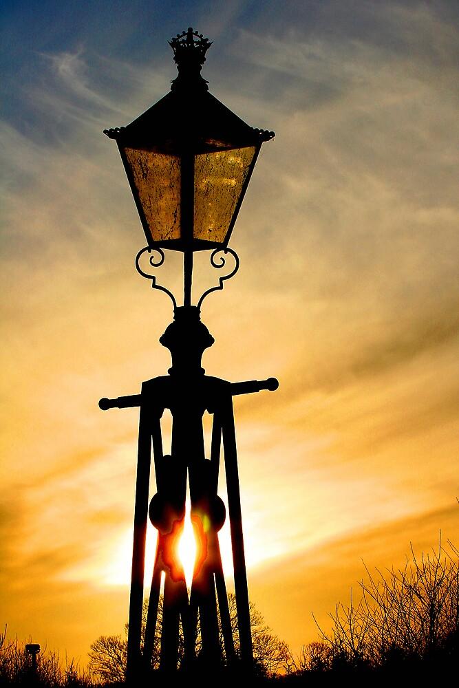 Lamp Light by dsargent