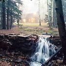 Cabin in the Woods by KateAndJana