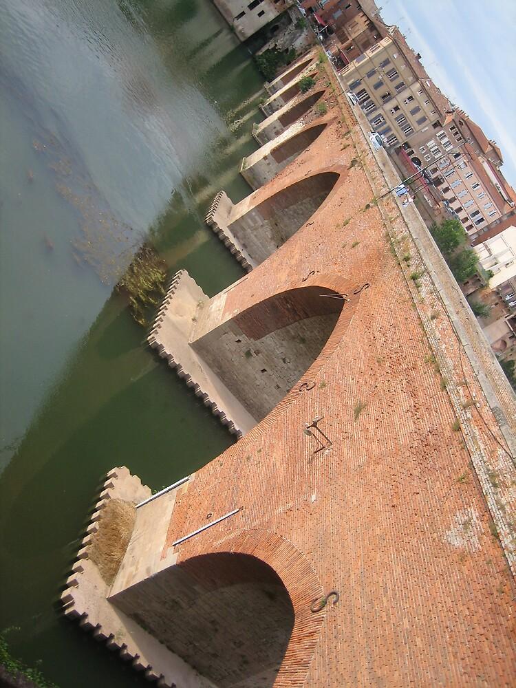 Bridge in Albi in France by dolphin