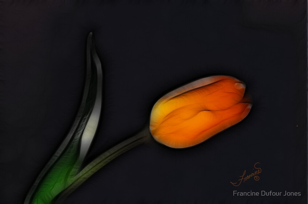 Orange Tulip Bending Toward the Light by Francine Dufour Jones