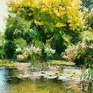 Delightful garden pond by Fran Woods