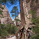 tent rocks 2 by Bruce  Dickson
