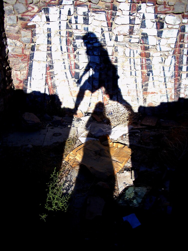 Shadow Crossing by chemis