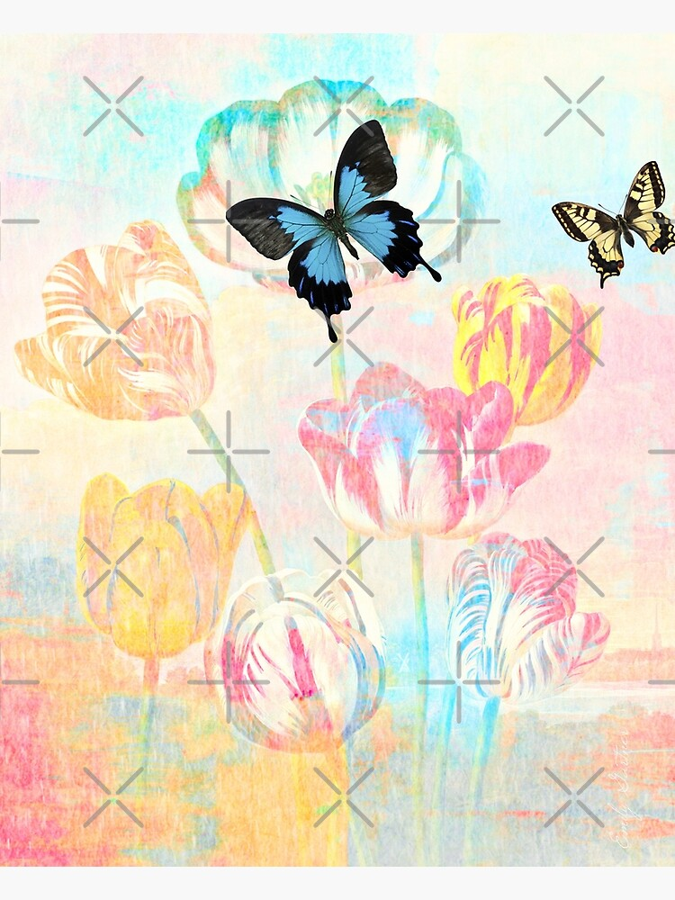 Botanical Prints-Tulips and Butterflies by Matlgirl