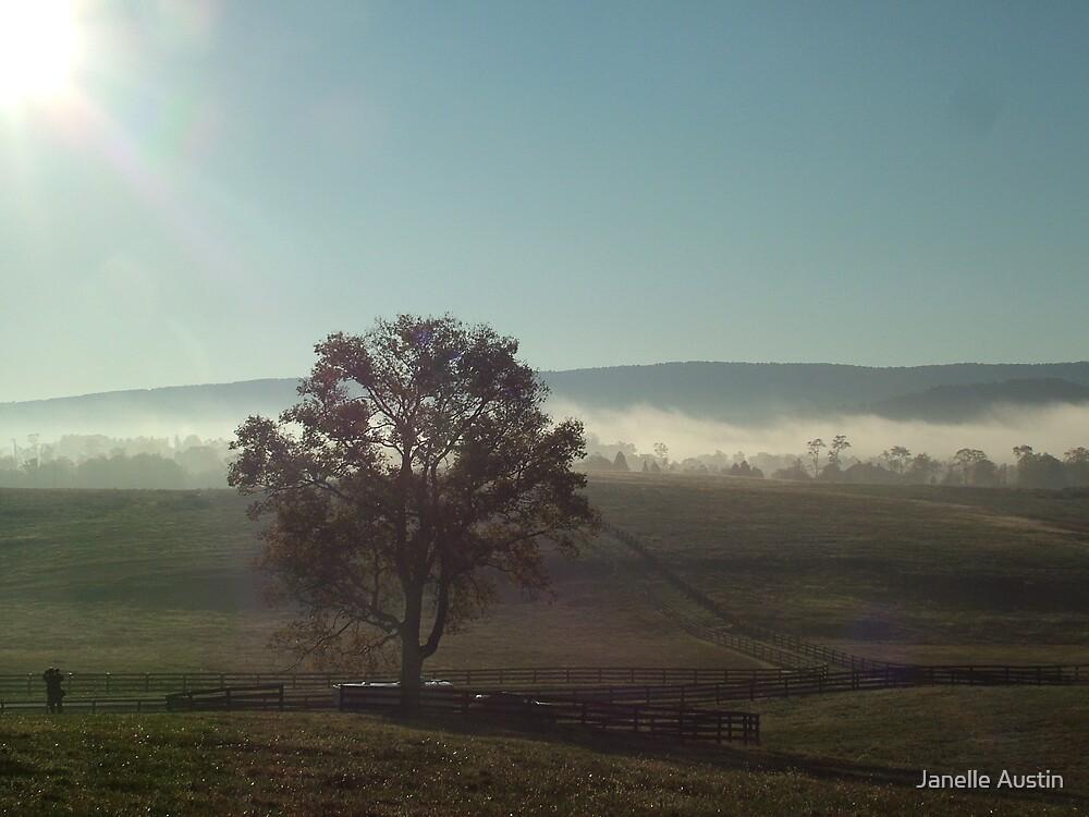 Shenandoah Valley Morn' by Janelle Austin