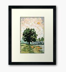 Smoky Day. Chestnut tree in the evening Framed Print