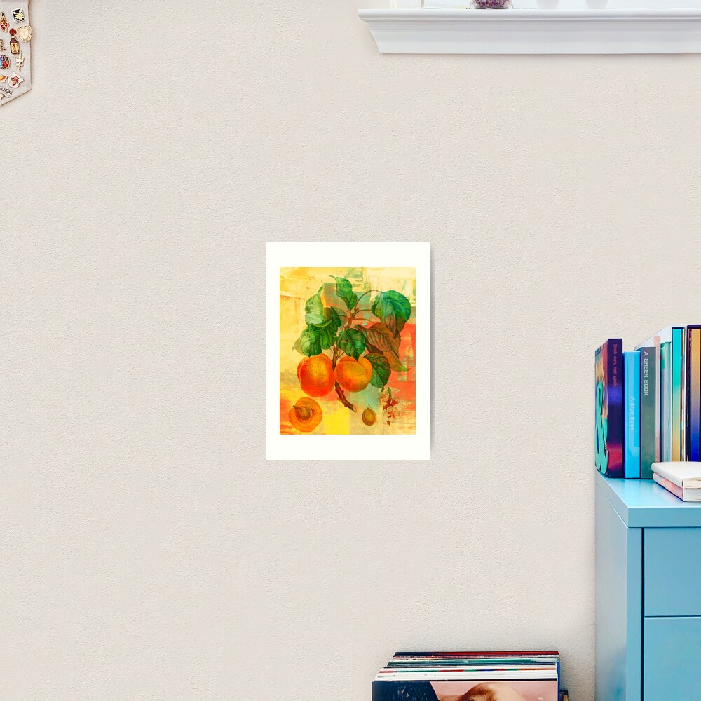 Botanical Print with a Modern Twist- Apricots- Peaches Art Print