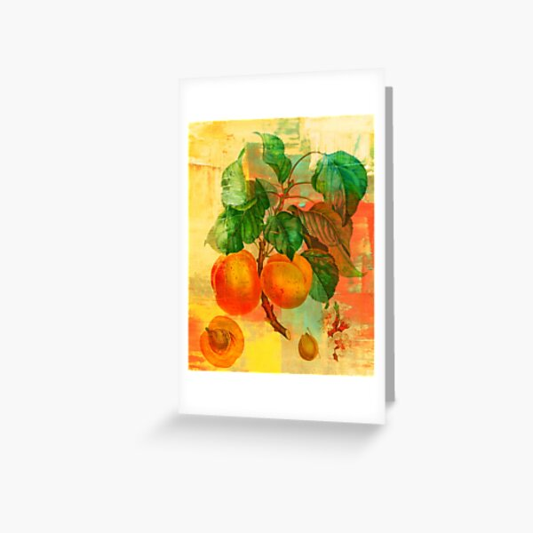 Botanical Print with a Modern Twist- Apricots- Peaches Greeting Card