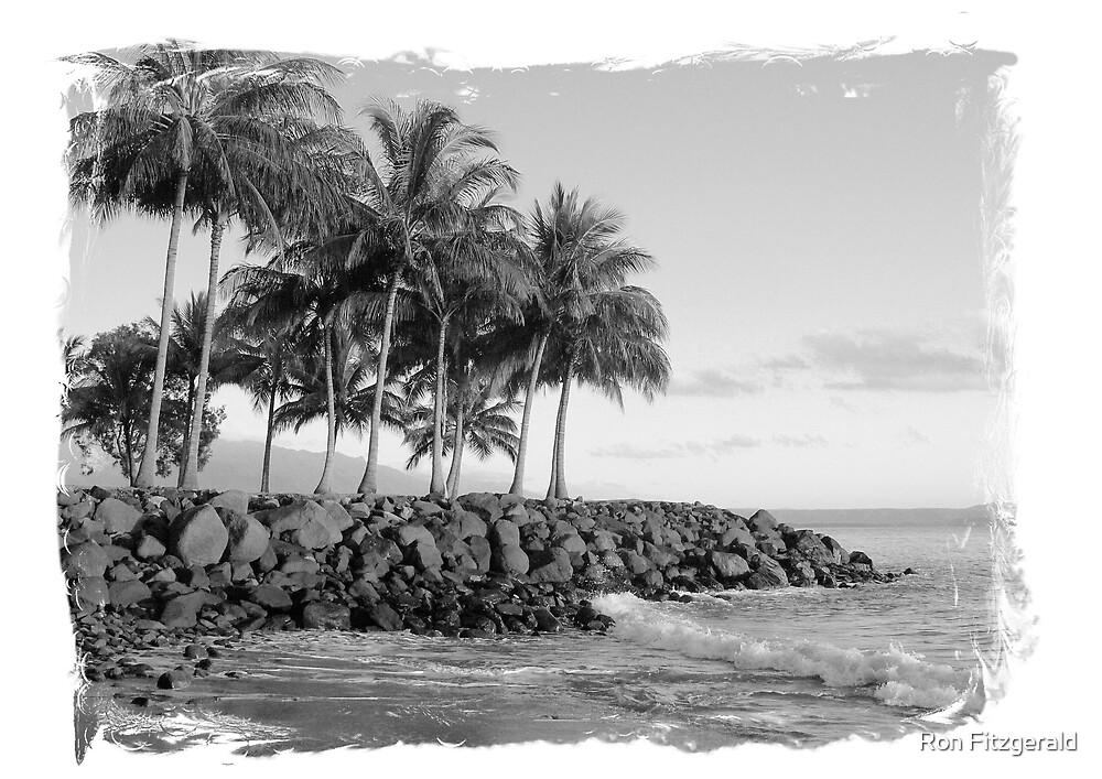 Dawn in Paradise (Black and White)  by Ron Fitzgerald