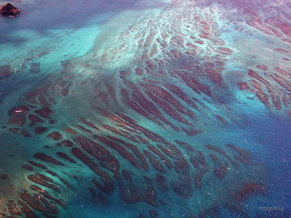 Dioxazine Purple Stripes in Cerulean Blue by moguesy