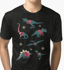 Dinos In Sweaters Tri-blend T-Shirt