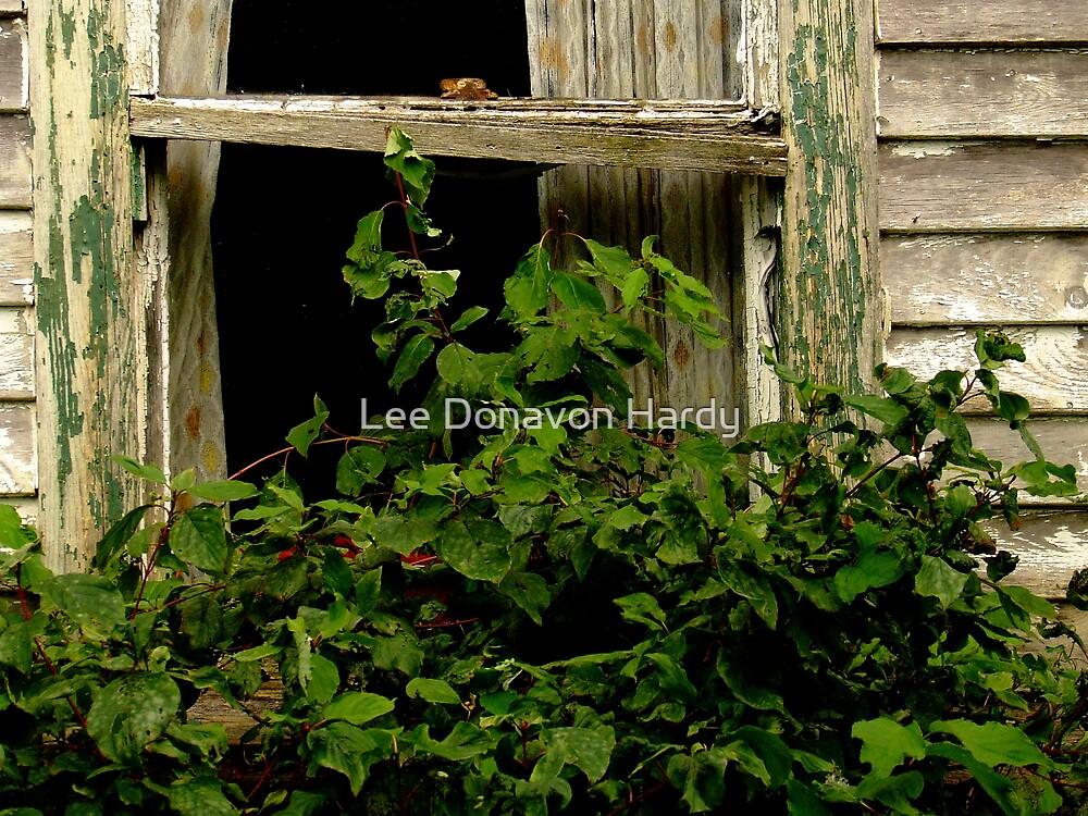 Addie's Window by Lee Donavon Hardy