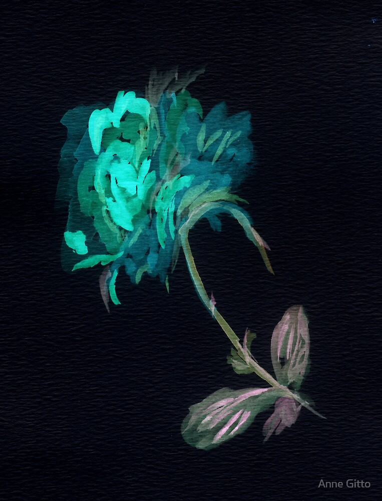Rose in the Negative by Anne Gitto