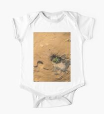 Life on Bare Rock - Delicate Plants on Rough Limestone Kids Clothes