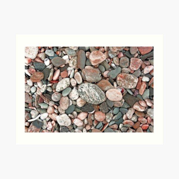 Gray, Pink and Salmon Beach Stones Art Print