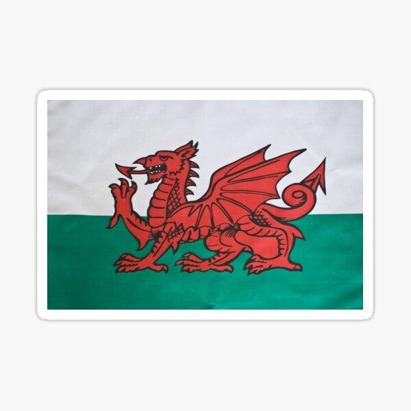 The Welsh Dragon Sticker