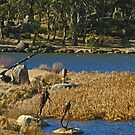 Fishing Sculptures - Lake Crackenback by Marilyn Harris