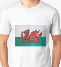 The Welsh Dragon T-Shirt