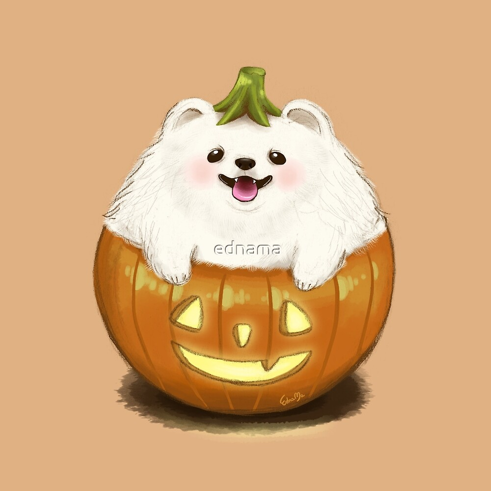 "the halloween pumpkin pomeranian dog lantern""ednama | redbubble"