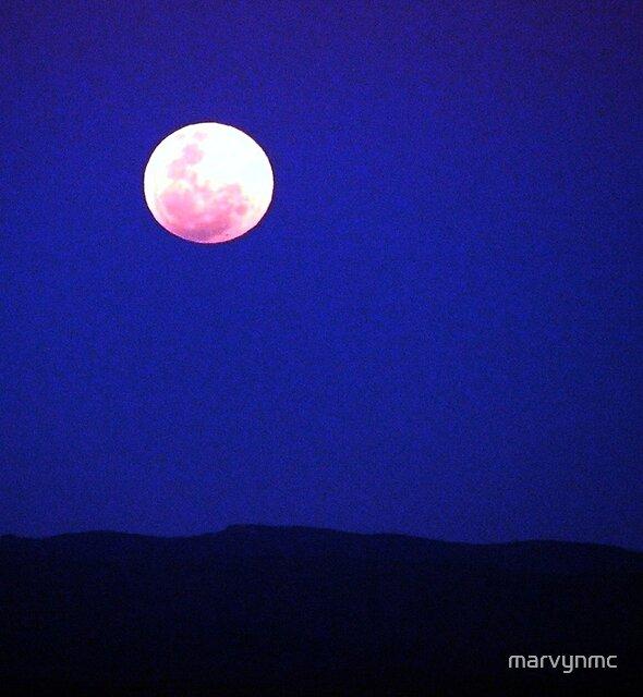 Full Moon Over The Flinders Ranges by marvynmc