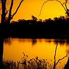 Murray River Loxton by Emjay01