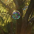 Bubble by Nick Wormald