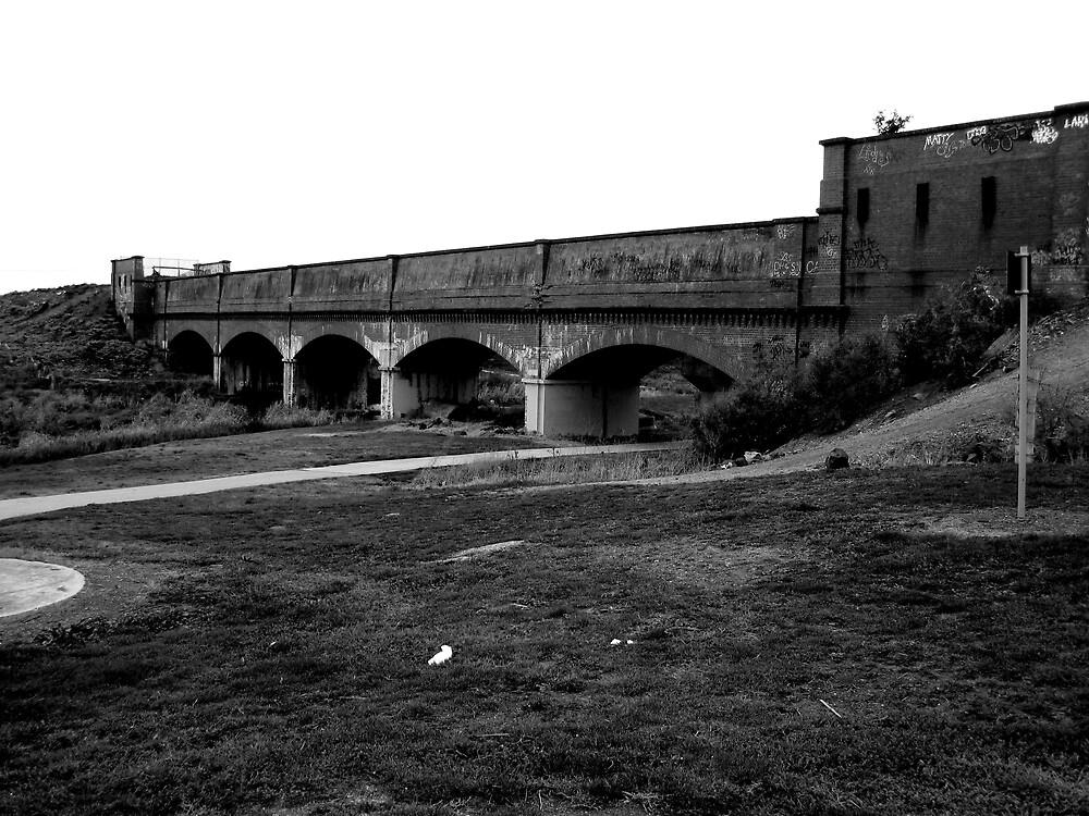 Skeleton Bridge in B & W by Lee Revell
