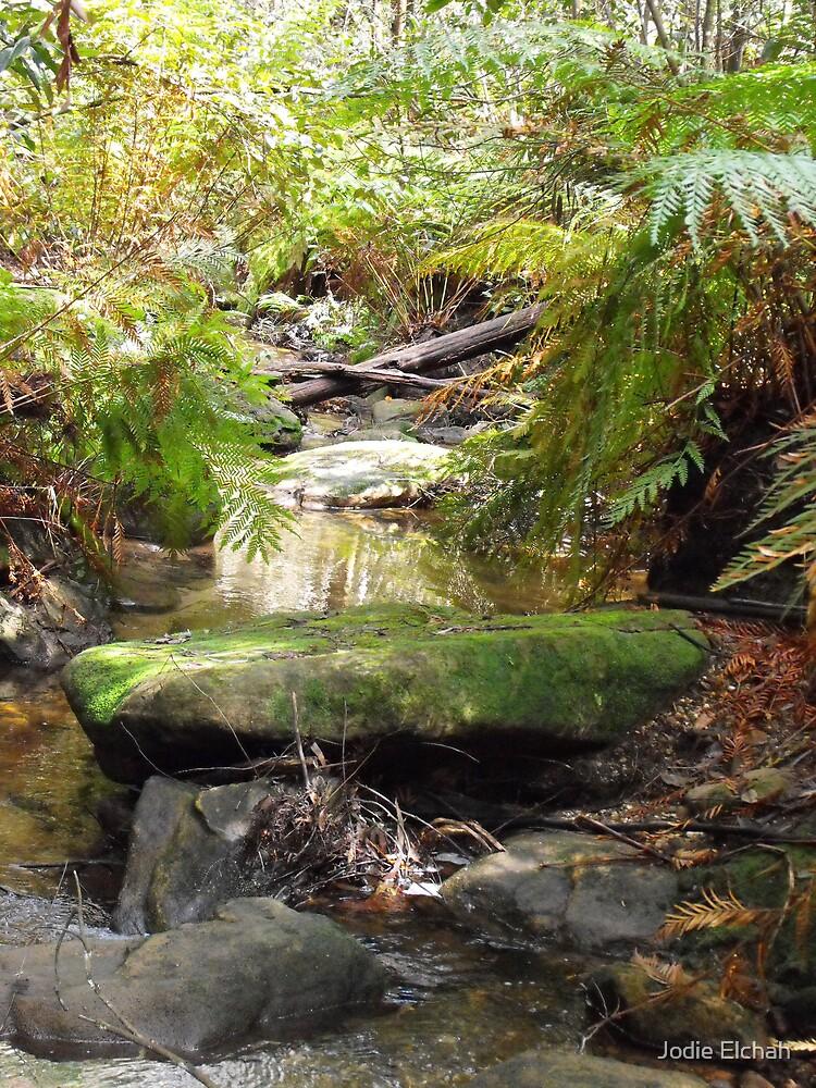 Wen's Seat at Cataract Falls by Jodie Elchah