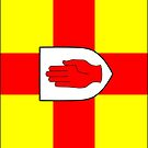 Ulster Flag Phone Cases by mpodger