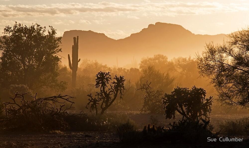 Desert Dust by Sue  Cullumber