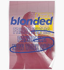 blonded Panorama Poster