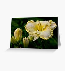 """""""First Knight"""" Daylily Greeting Card"""
