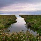Morecambe Bay Serenity by Tibby Steedly