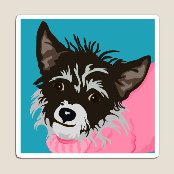 Dog in Pink Sweater Magnet