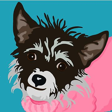 Dog in Pink Sweater by nriedie