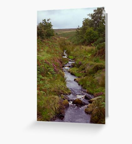 Ousegill Beck - North York Moors Greeting Card