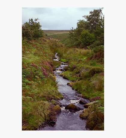 Ousegill Beck - North York Moors Photographic Print